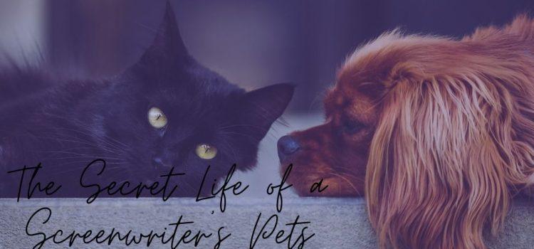 The Secret Life of a Screenwriter's Pets